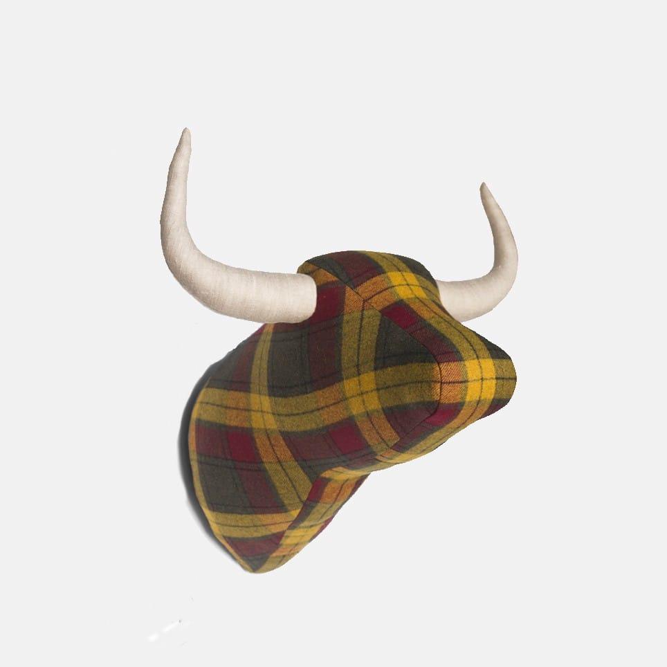 Soft Bull Hamish